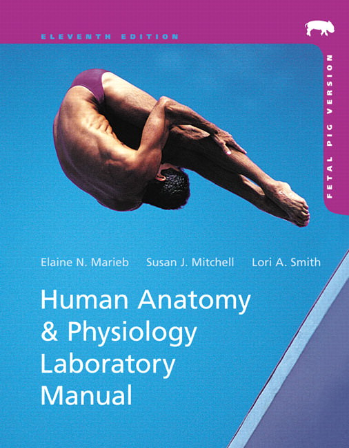 Human Anatomy and Physiology Laboratory Manual, Fetal Pig Version Guide